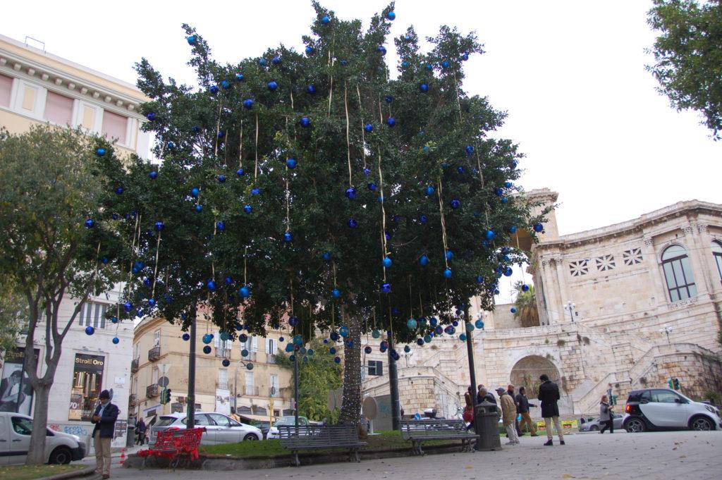 Albero dei Desideri Cagliari